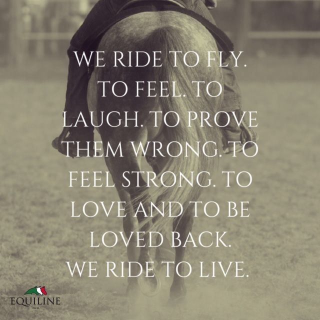 We Ride To Fly To Feel To Laugh To Prove Them Wrong Horse Love Quotesinspirational