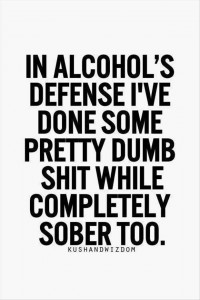 Funny Drinking Quotes  Dump A Day