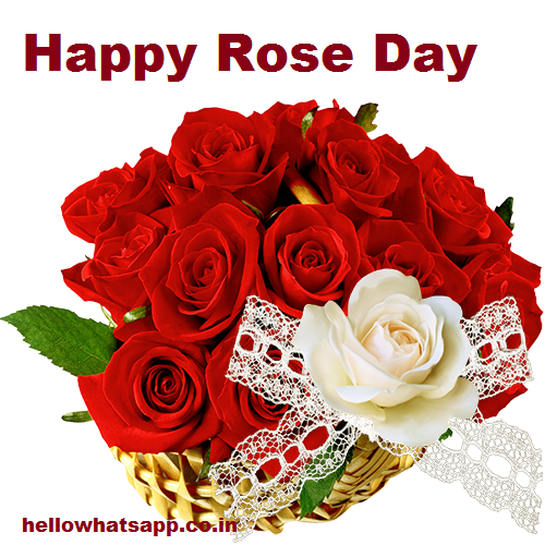 Aapke Liye Hamne Yahn Rose Day Wishes Whatsapp Status Sms Shayari Hindi Me Diya Hai Aapko Pasand Aayegi Aap Bhi Apane Friend Ko Is Status Ke Jariye