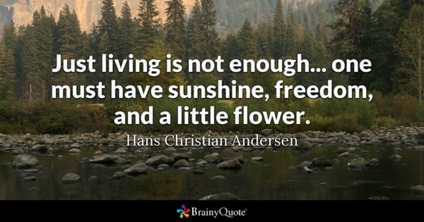 Just Living Is Not Enough One Must Have Sunshine Freedom And