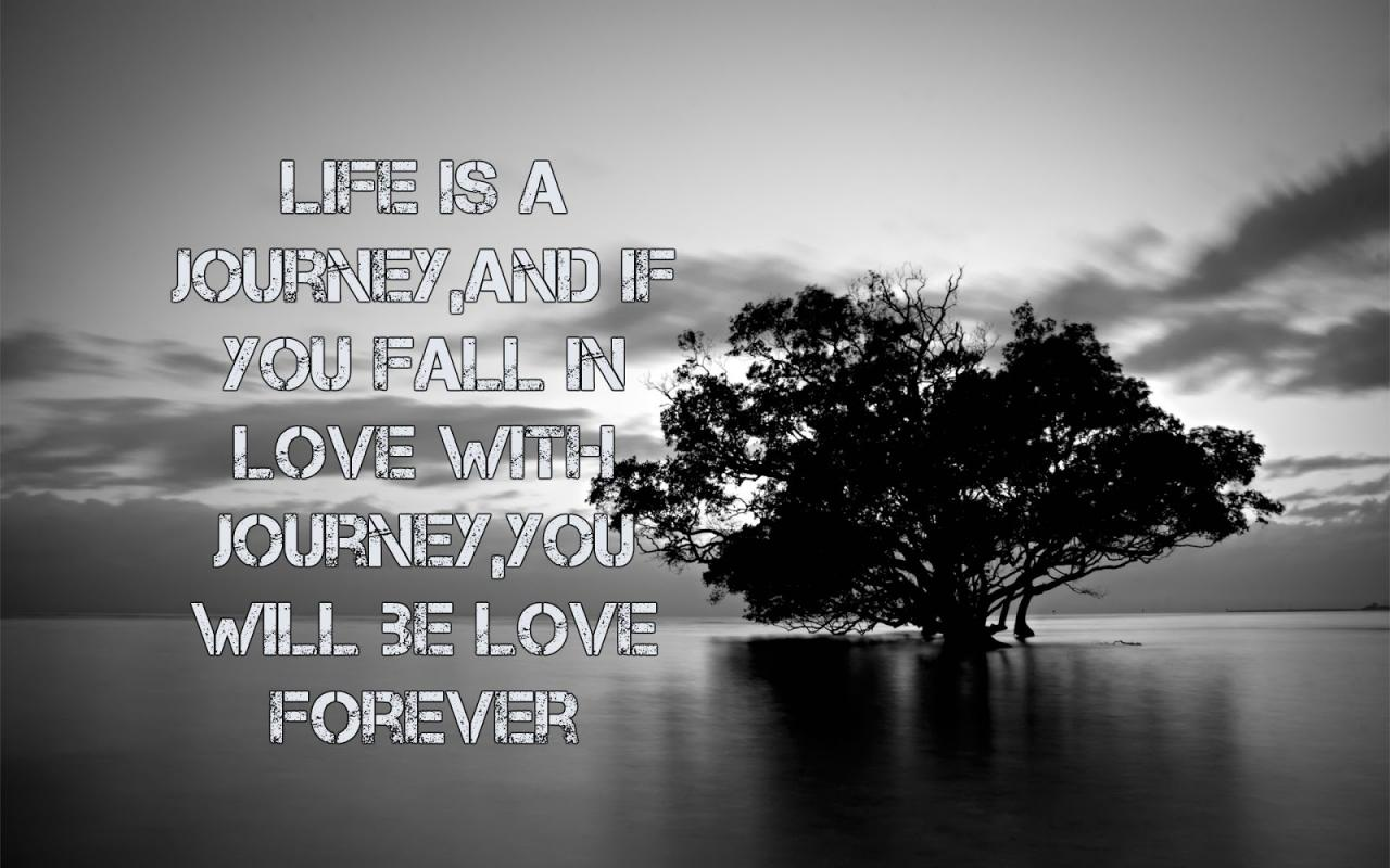 Journey Of Love Quotes Best Inspirational Life Quotebest Life Quote Evertop Life