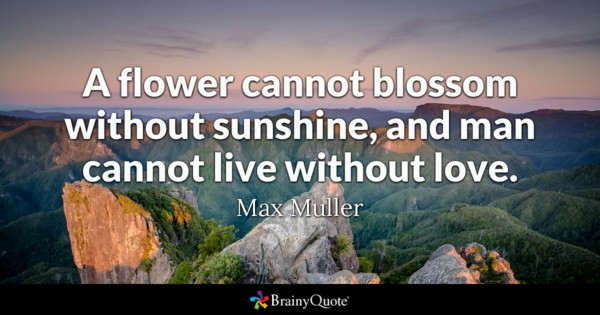 A Flower Cannot Blossom Without Sunshine And Man Cannot Live Without Love Max