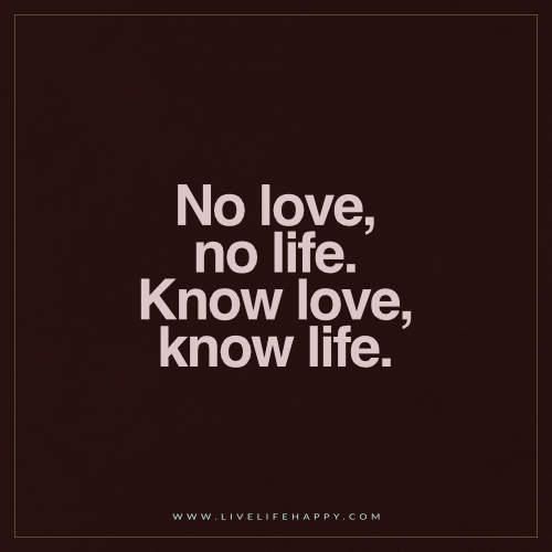Live Life Happy No Love No Life Know Love Know Life