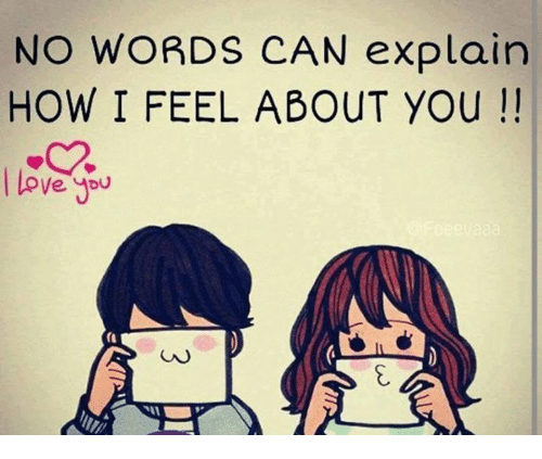 Love Memes And Word No Words Can Explain How I Feel About You