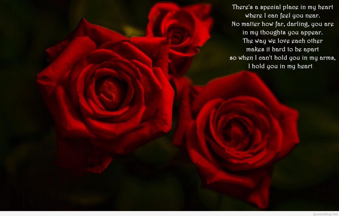 Quotes About Roses And Love Love Quote For Roses Valentine