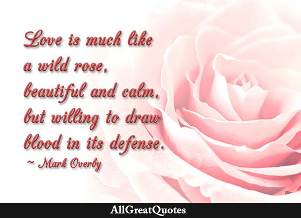 Wild Rose Quote Mark Overby