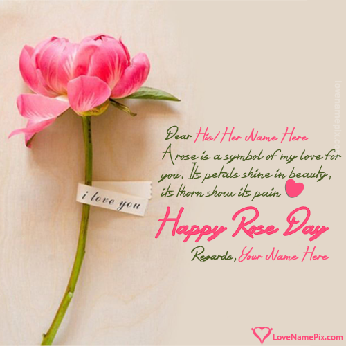 Love quotes for rose day hover me m4hsunfo