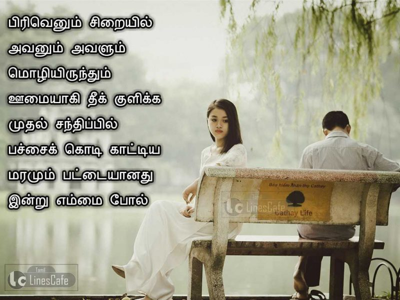Love Breakup Quotes In Tamil Hover Me