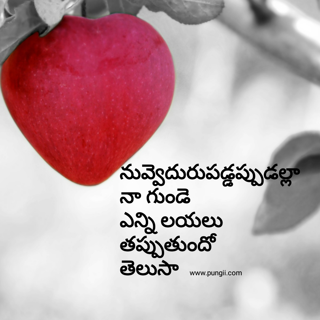 Love Quotes In
