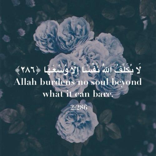 Love Quotes In Tumblr English Quran Quotes Tumblr