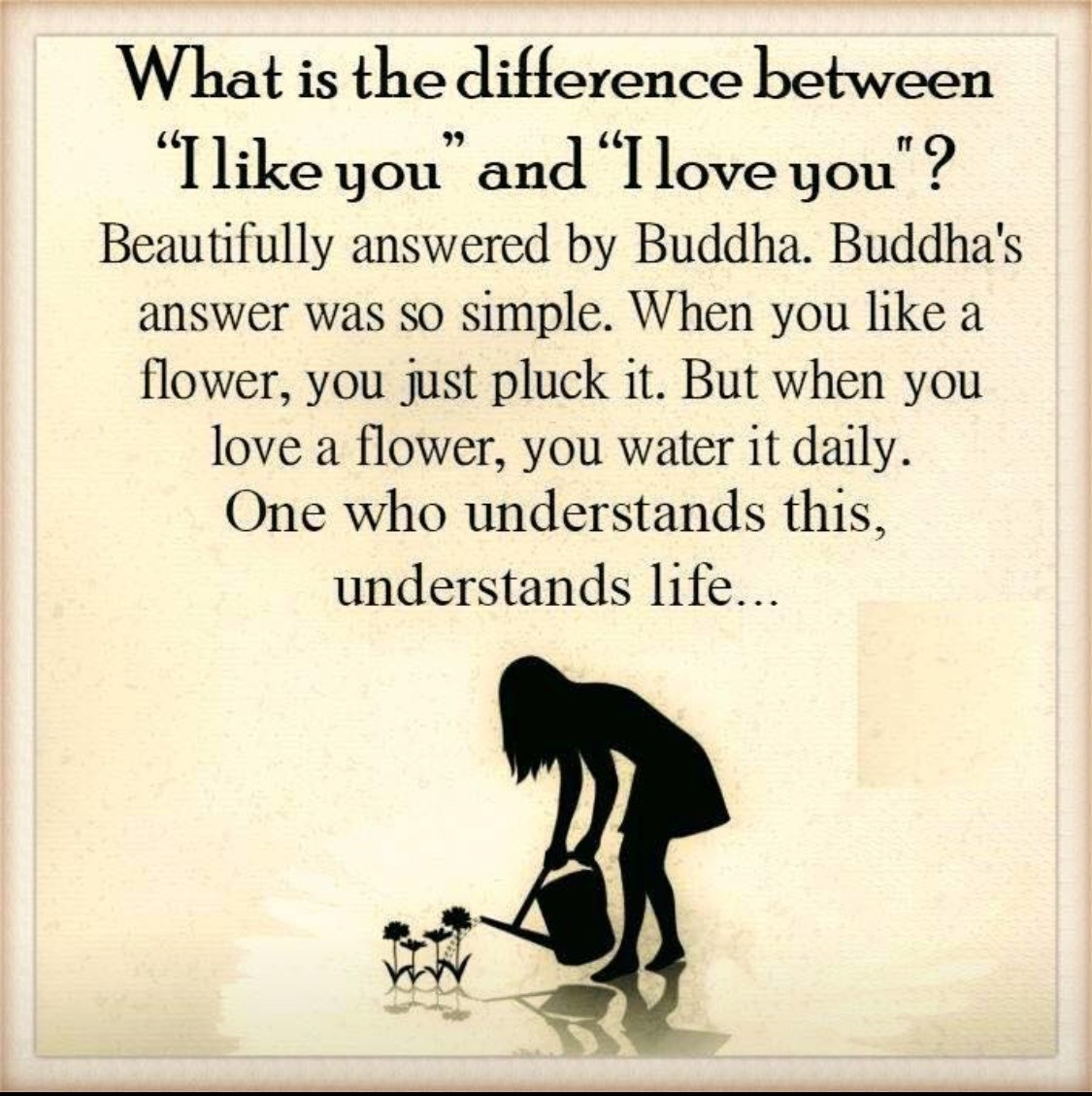Love Quote Truth Flower Buddha