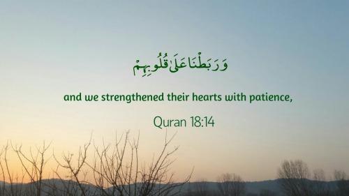 Muslimdailyreminders