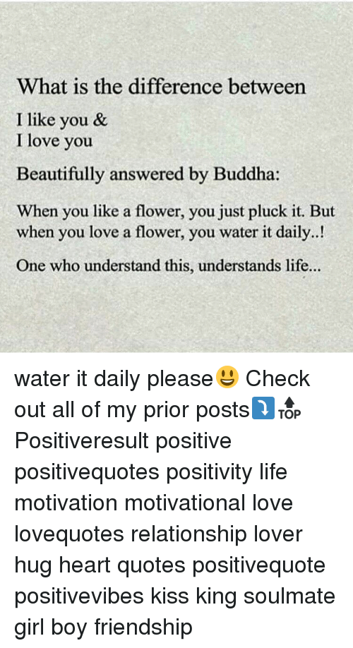 Memes Buddha And F F A What Is The Difference Between I Like You