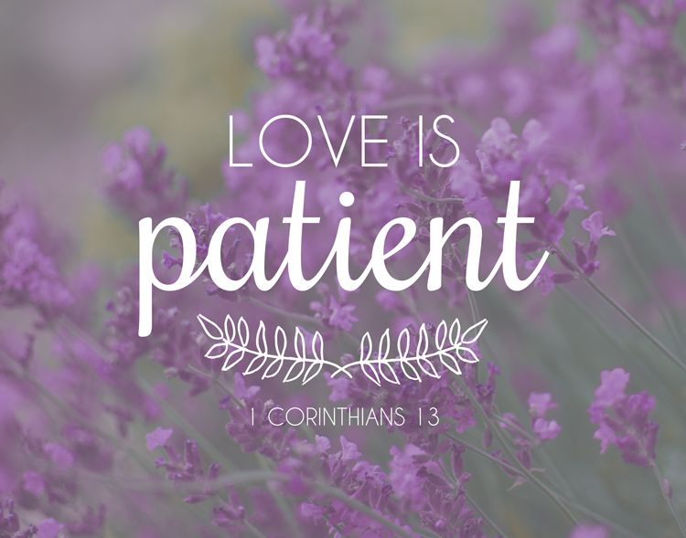 Bible Verses About Love Love Is Patient This Busy Life