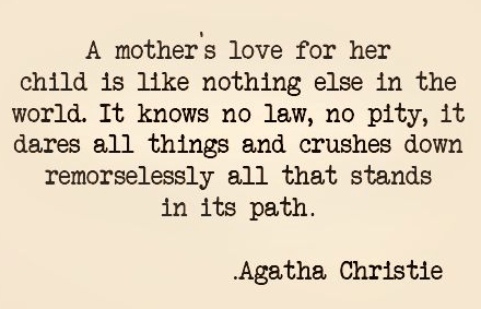 Quotes About Mothers Love The No Limit Love