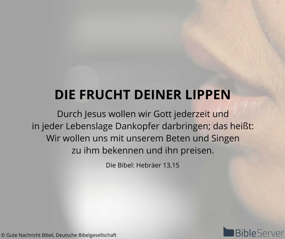 Bibelvers Nachzulesen In Der Bibel Auf Bibleserver Hebraer