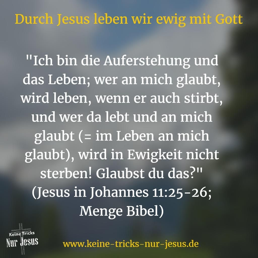 Das Ware Ja Schon Mehr Als Gut Wenn Wir Als Jesus Schafchen Nur Fur Immer Mit Gott Versohnt Waren Holle Kein Thema Mehr