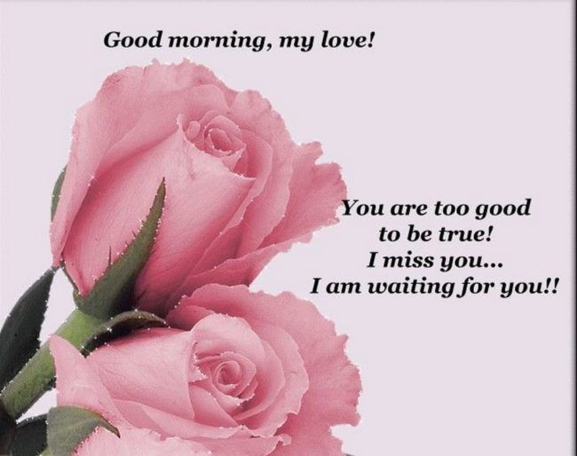 Good Morning Quotes Good Morning My Love I Miss You