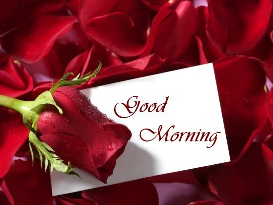 Good Morning Quotes Love Sayings True Love Not Fill Heart Over Flows Love It