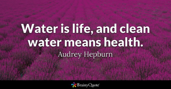 Water Is Life And Clean Water Means Health Audrey Hepburn
