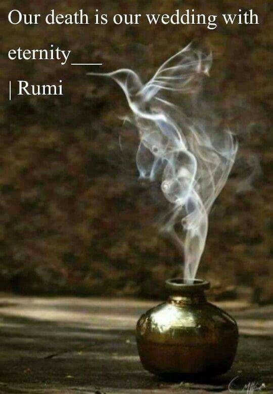 Unser Tod Ist Unsere Hochzeit Mit Der Ewigkeit Rumi  E D A Our Is Our Wedding With Eternity Rumi