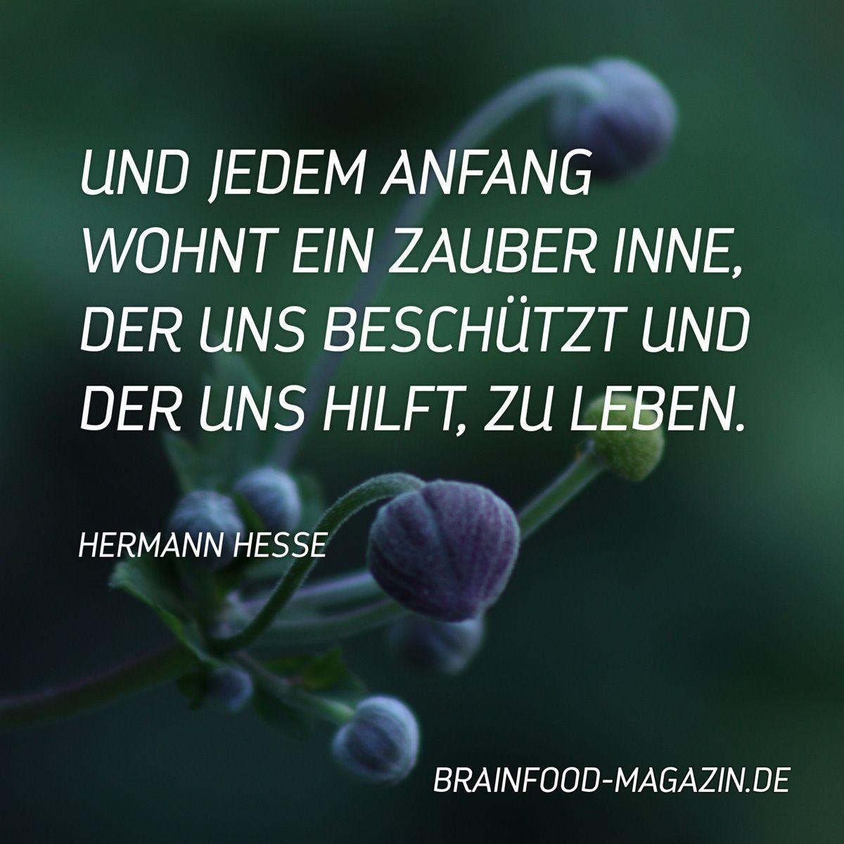 Hermann Hesse Aus Dem Buch Lebensstufen Lyrik Hesse Zitate Spruche Deutsch Hermannhesse Deutschelyrik German Neubeginn Veranderung