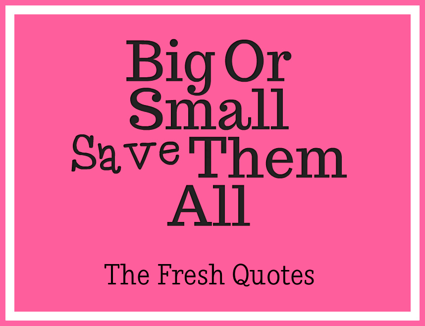 Funnyt Cancer Quotes Big Or Small Save Them All By The Fresh Quotes Adorable Pink