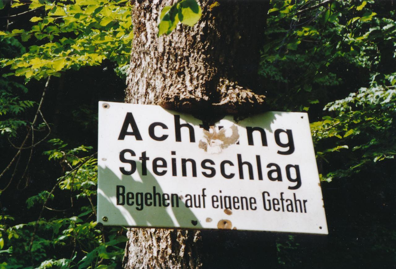 Schild Vorsicht Steinschlag