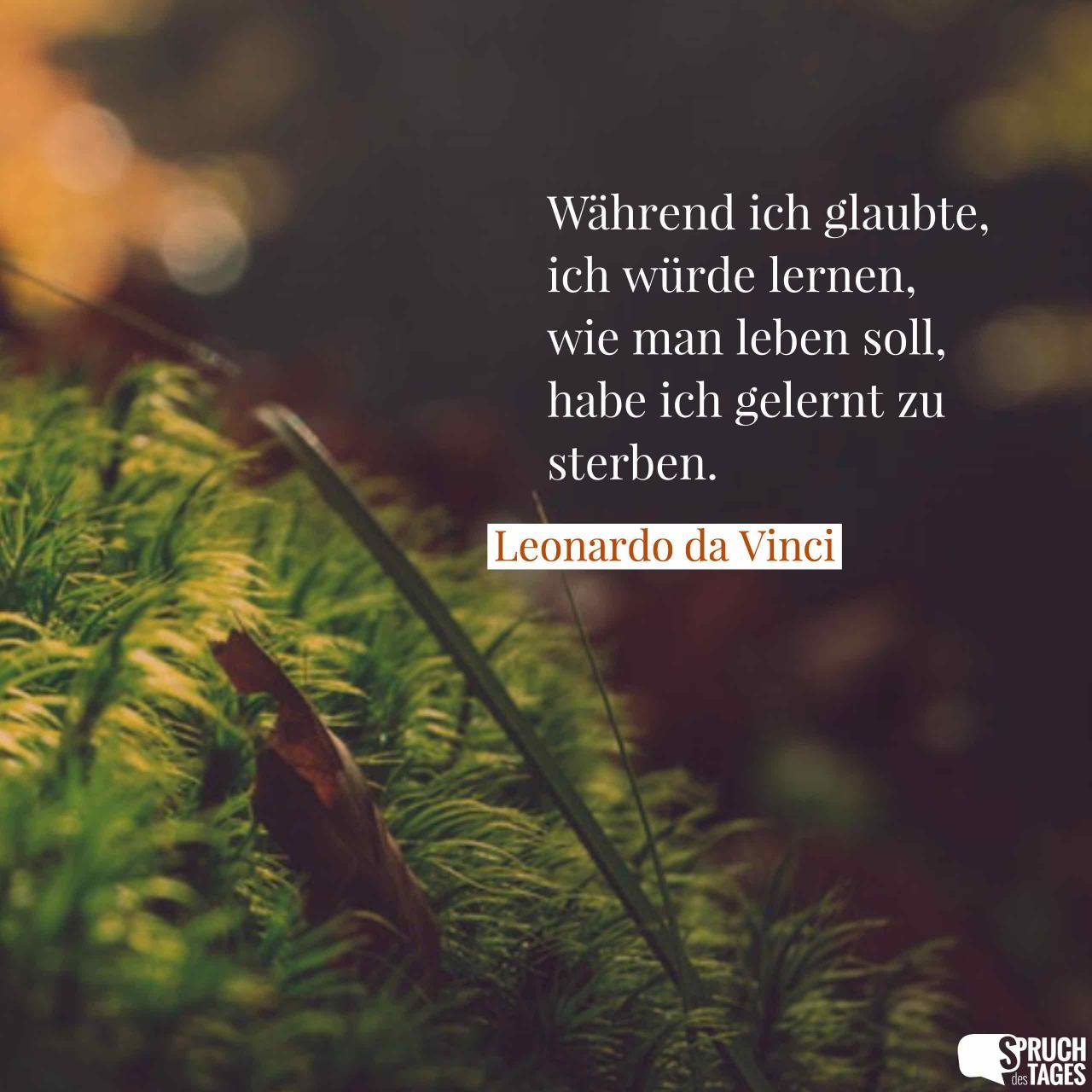Wahrend Ich Glaubte Ich Wurde Lernen Wie Man Leben Soll Habe Ich Gelernt Zu Sterben Leonardo Da Vinci