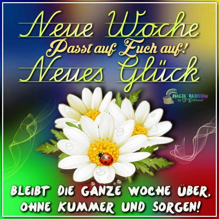 Guten Morgen Montag Schone Woche Mutti Spruche Und Zitate Nacht Lustige Bilder Lustiges