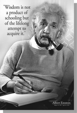 Poster Einstein Wisdom