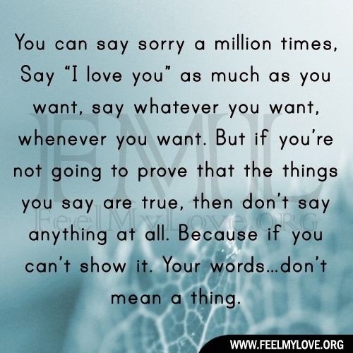 You Can Say Sorry A Million Times Say I Love You As Much