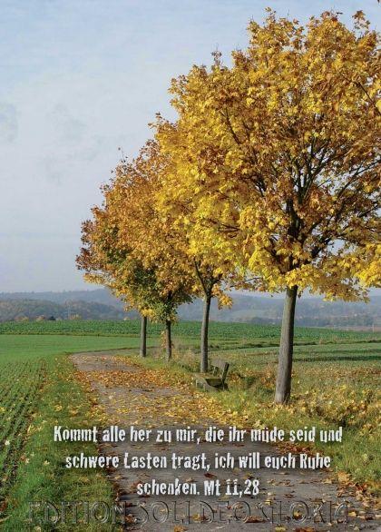 Christliche Postkarte  Matthaus Trost Krankheit Bibel A La Carte Christliche