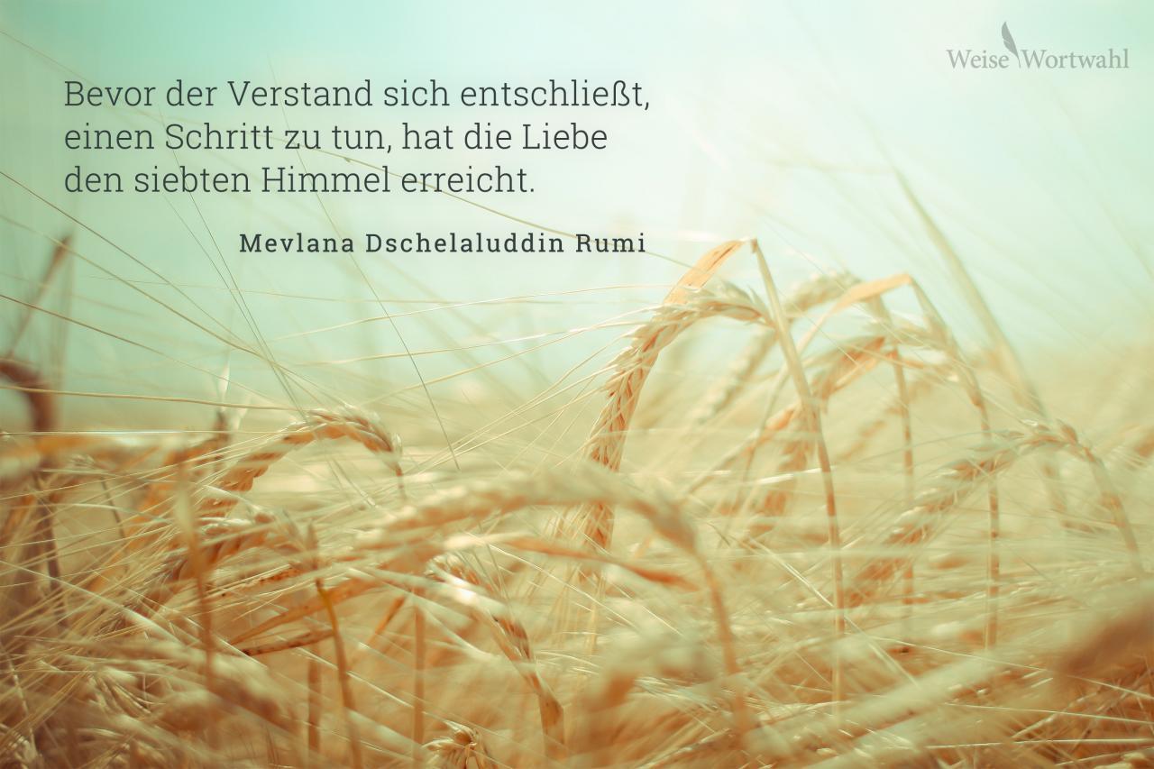 Bevor Der Verstand Sich Entschliest Einen Schritt Zu Tun Hat Liebe Den Siebenten Himmel Erreicht Mevlana Dschelaluddin Rumi