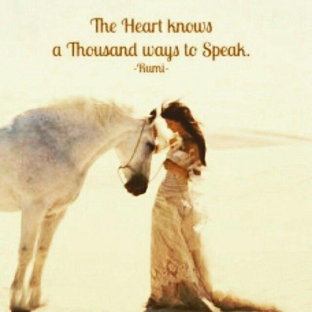 Das Herz Kennt Tausend Wege Zu Sprechen Rumi  E D A The Heart Knows A Thousand