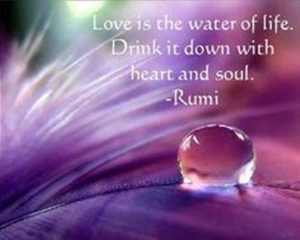 Liebe Ist Das Wasser Des Lebens Trink Es Mit Herz Und Seele Rumi  E D A