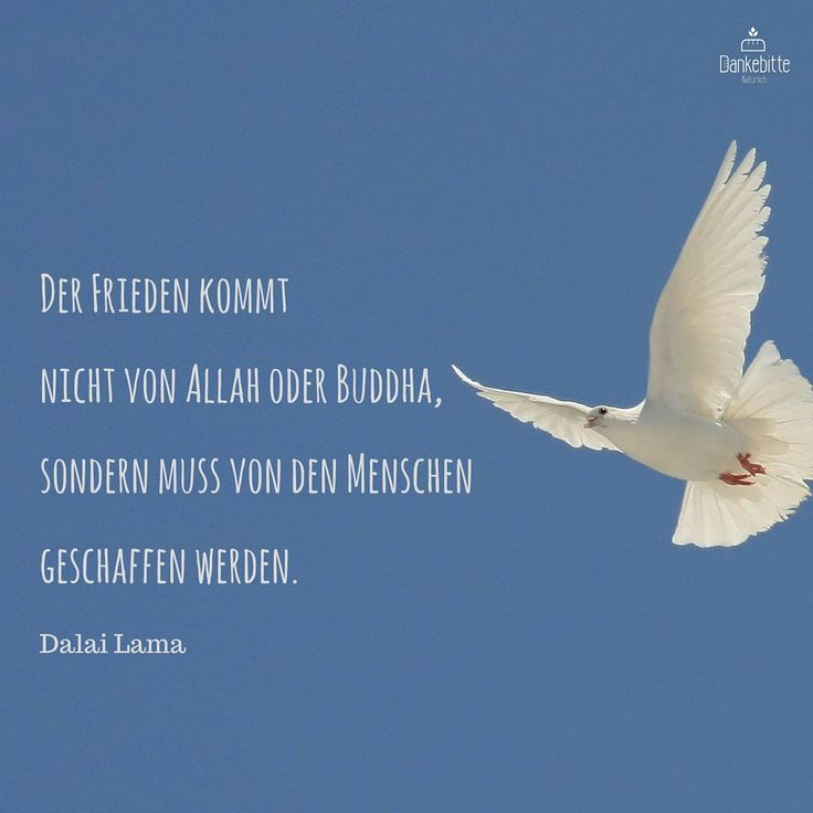 Der Frieden Kommt Nicht Von Allah Oder Buddha Sondern Muss Von Den