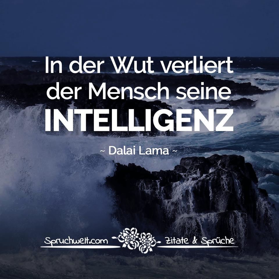 In Der Wut Verliert Der Mensch Seine Intelligenz Dalai Lama Zitat Buddhistische Weisheiten Zitate Spruche Spruchbilder Deutsch