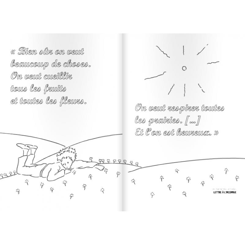 Schonsten Zitate Von Antoine De Saint Expuery Zum Ausmalen Franzosische Ausgabe La