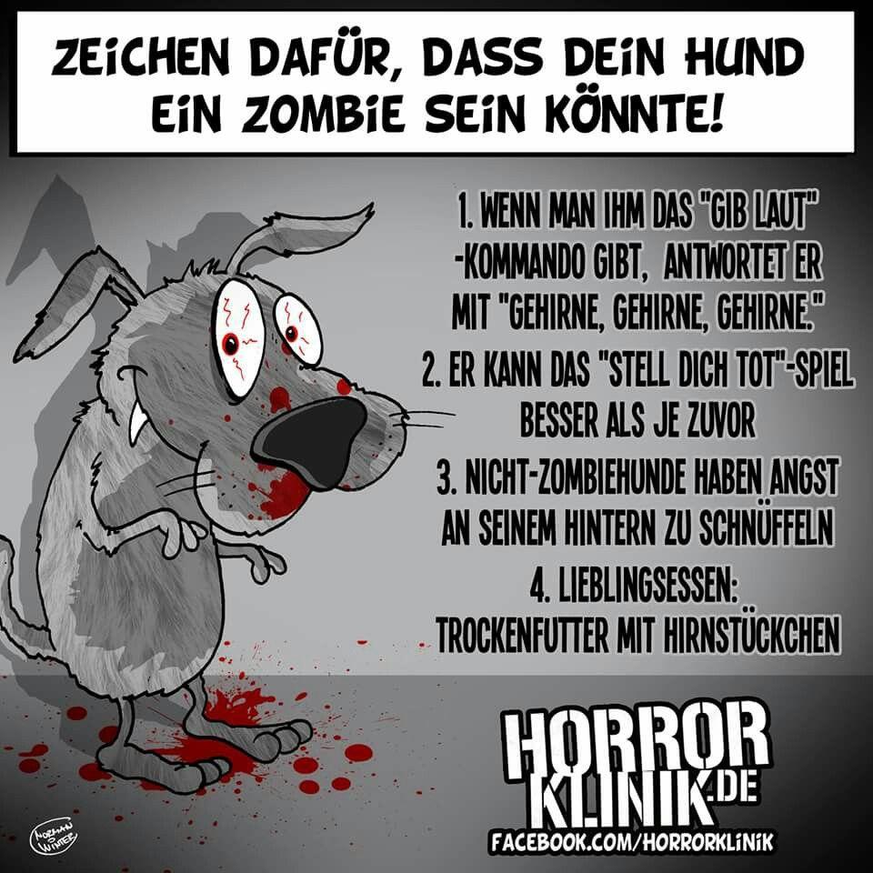 Tod Spruche Zitate Lustiges