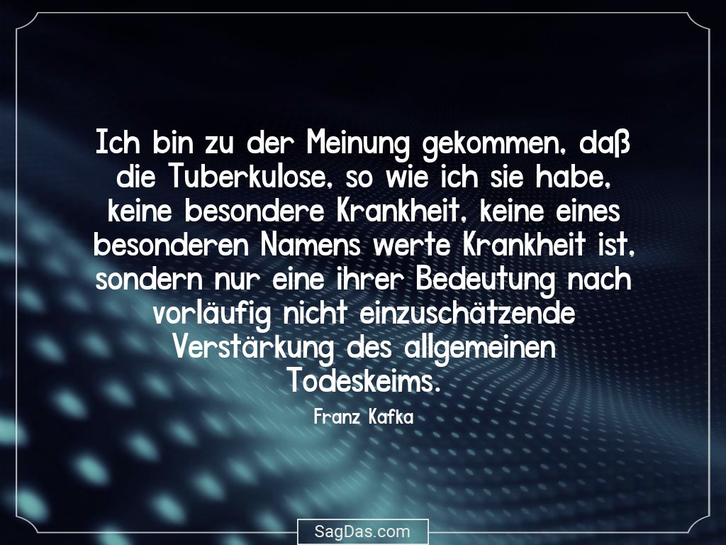 Franz Kafka Zitat Ich Bin Zu Der Meinung Gekommen