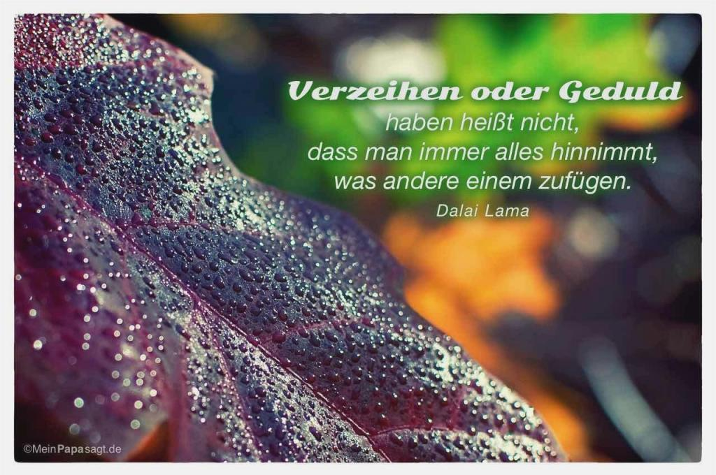 Zitate Dalai Lama Liebe Images Zitate Leben Genieen