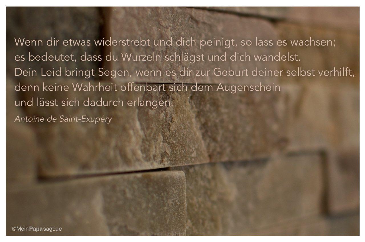 Mauerwerk Mit Dem Antoine De Saint Exupery Zitat Wenn Dir Etwas Widerstrebt Und Dich