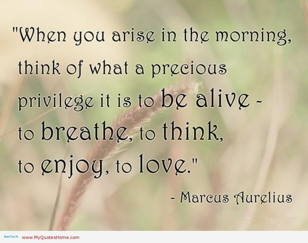 When Youiny Love Quotes Arise In The Morning Shocking Think Precious Privilege Alive This Enjoy