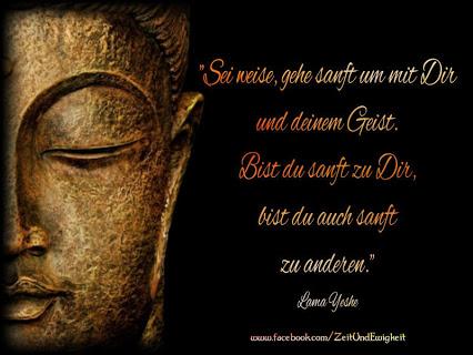 Kalender  Buddhas Weisheiten Jeden Monat Ein Weiser Spruch Von Buddha Mit Einer Wundervollen Fotografie Rates Of Dalai Lama Charges Of Dalai Lama