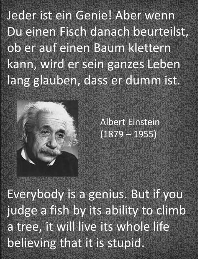 Einstein Zitat