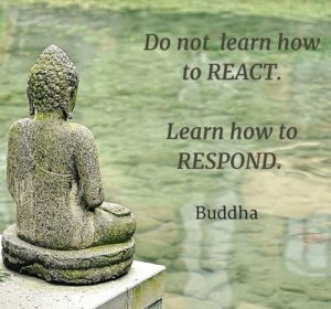 Buddha Quotes On Knowledge Buddha Quotes On Learning