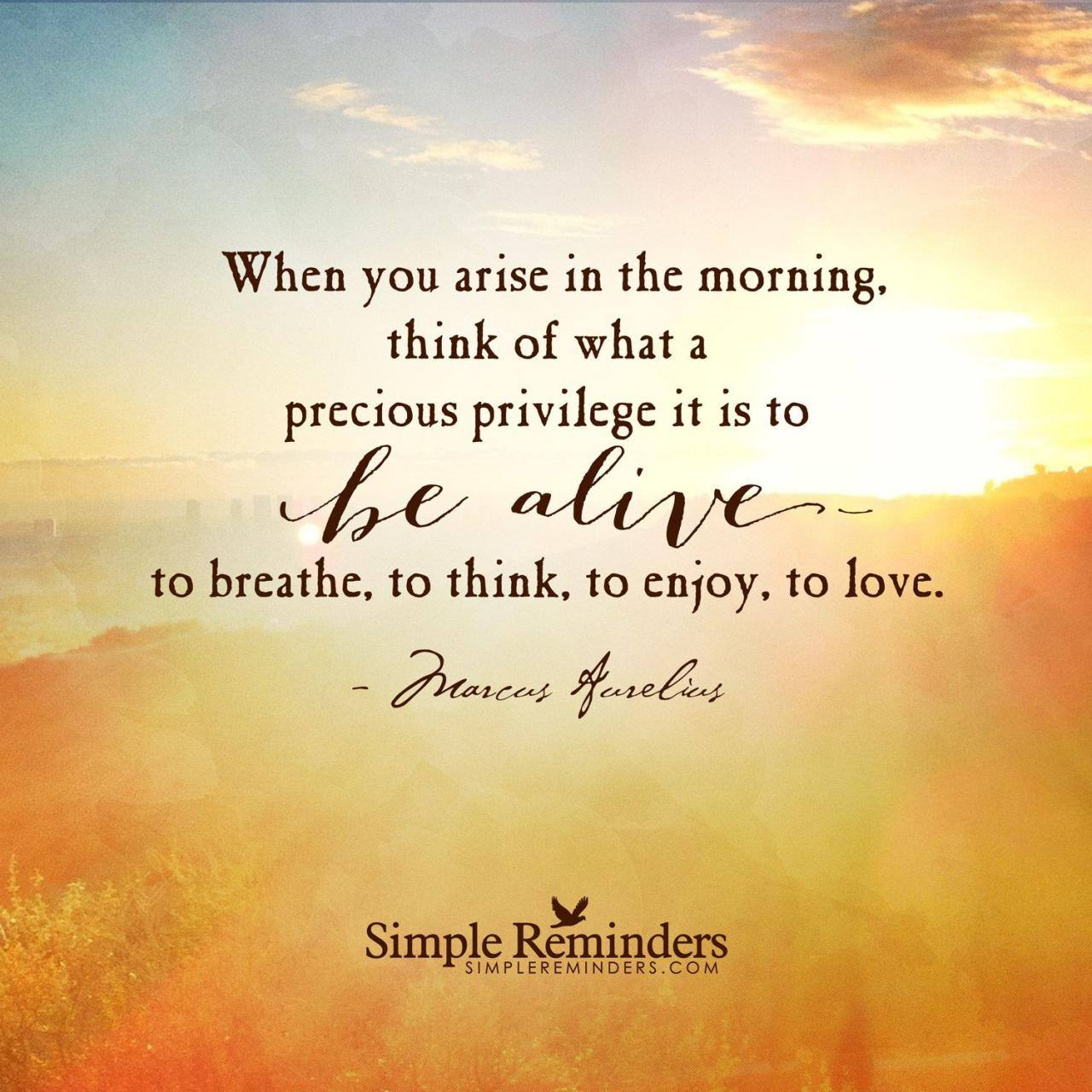 When You Arise In The Morning Think Of What A Precious Privilege It Is To