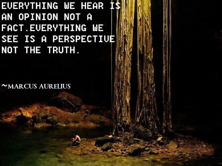 Everything We Hear Is An Opinion Not A Fact Everything We See Is A Perspective