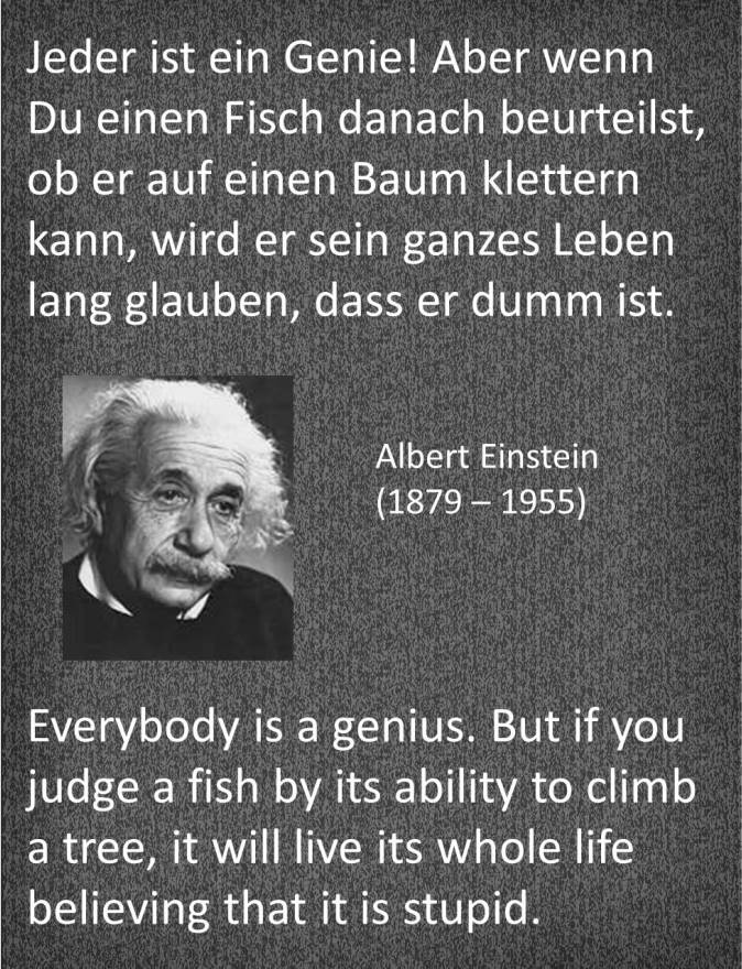 Einstein Quotes About Grammar Quotesgram